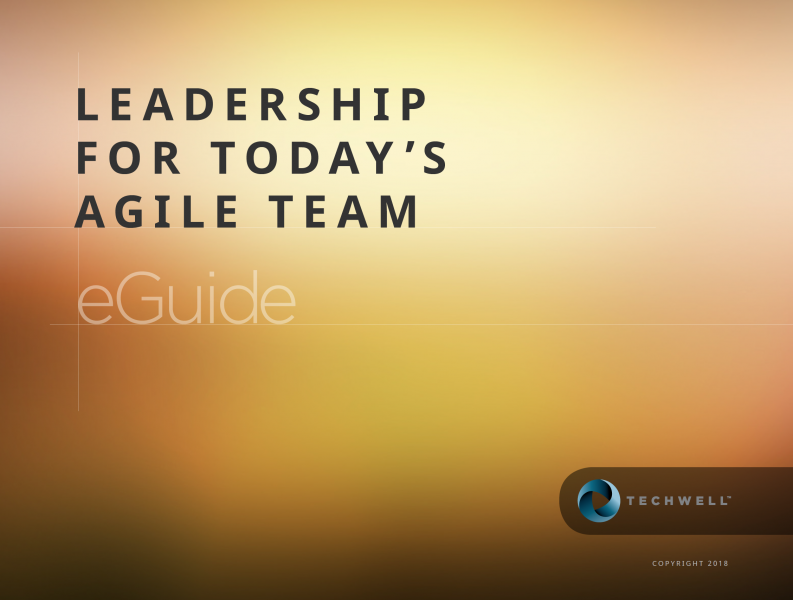 leadership in agile